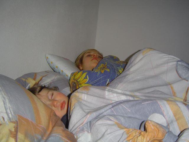 Süße friedliche Schlafmäuse