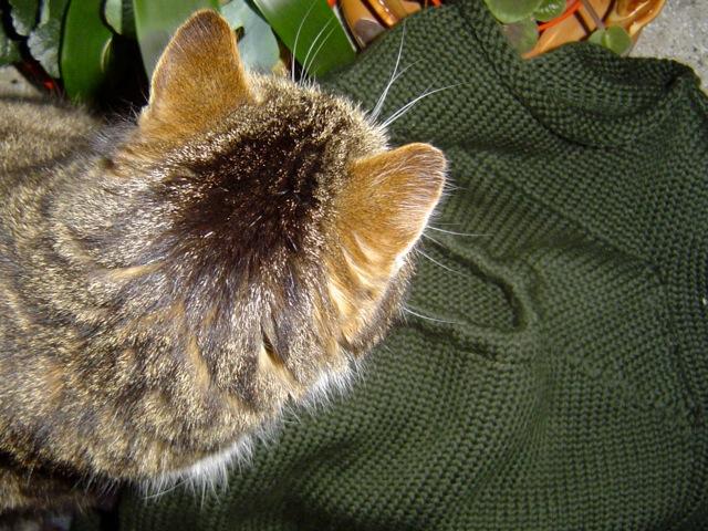 Der Mamaponcho ist auch eine kuschelige Decke.