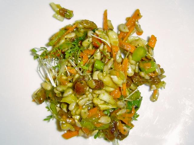 Adi Shakti Salat