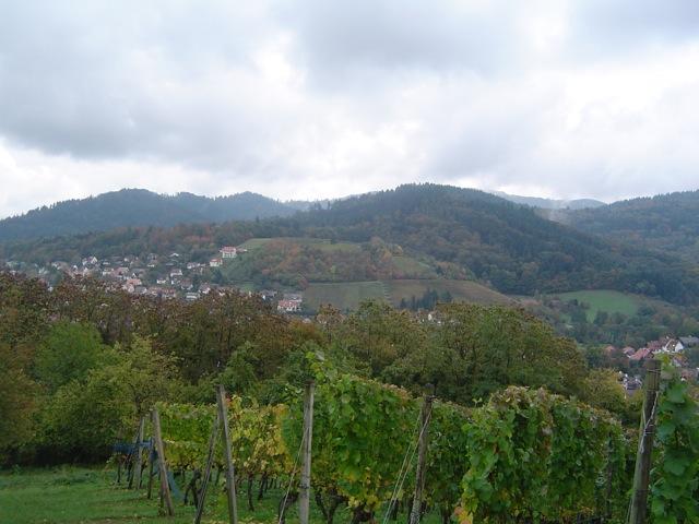 Herbst im Hexental