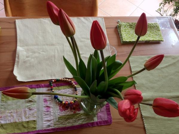 Tulpen aus Sachsen